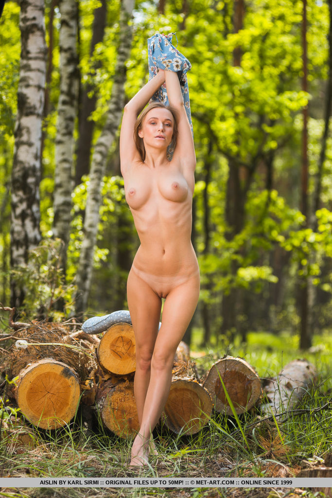 Logging MetArt is unbelievable Aislin