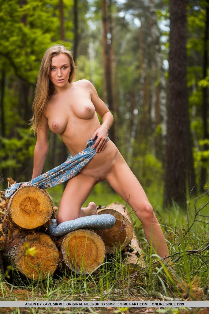 Logging MetArt is hair-raising Aislin