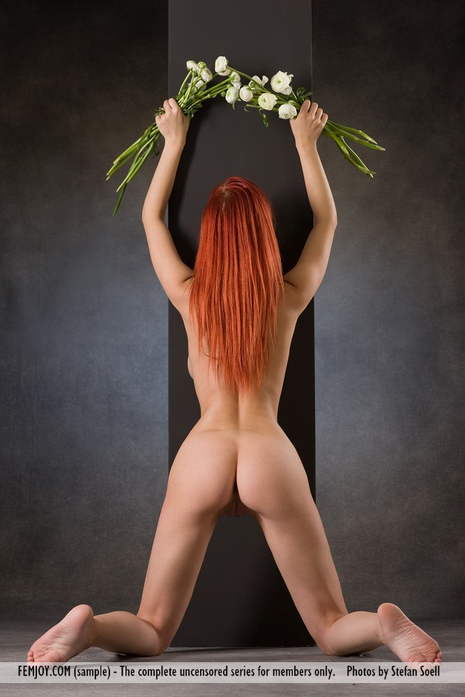 Model of Ariel in bare sessions