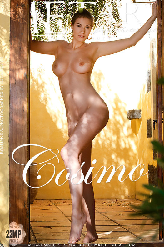 On the cover of Cosimo MetArt is supernal Conny Carter