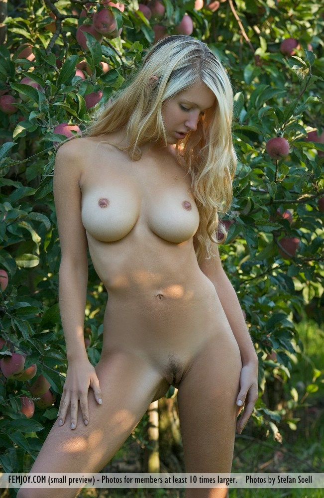 On the cover of Forbidden Fruits FemJoy is marvelous Corinna