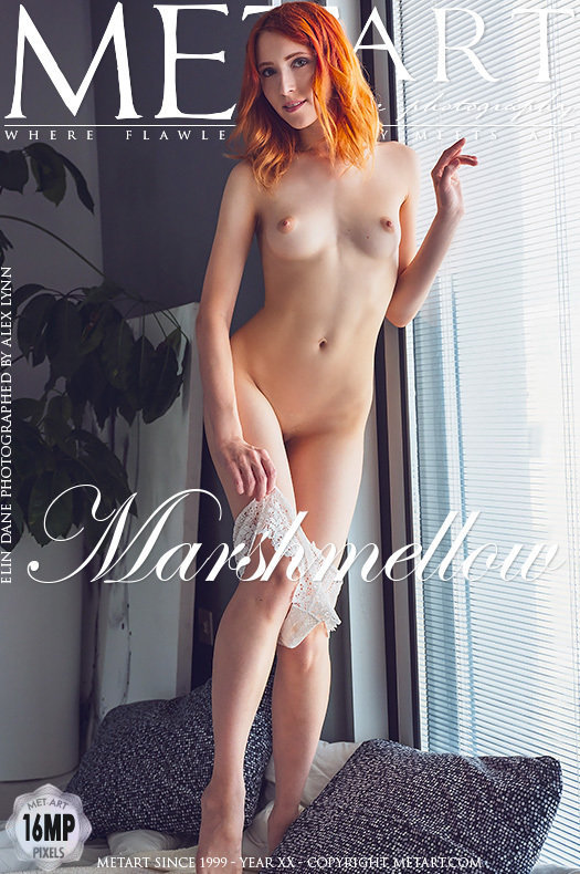 On the magazine cover of Marshmellow MetArt is spectacular Elin Dane