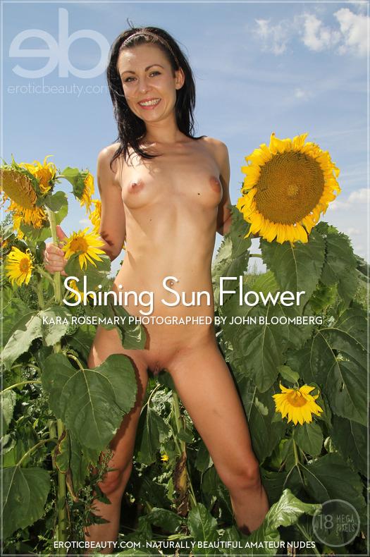Featured Shining Sun Flower Erotic Beauty is miraculous Kara Rosemary