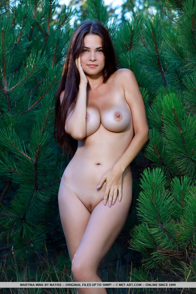 Best overwhelming model Martina Mink in buck naked sessions
