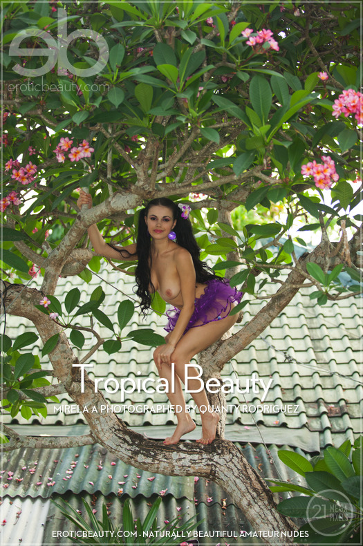 On the cover of Tropical Beauty Erotic Beauty is supernal Mirela A