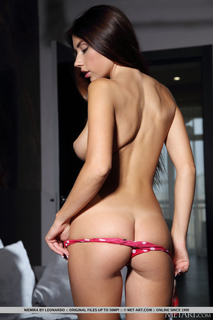 Niemira in stripped image