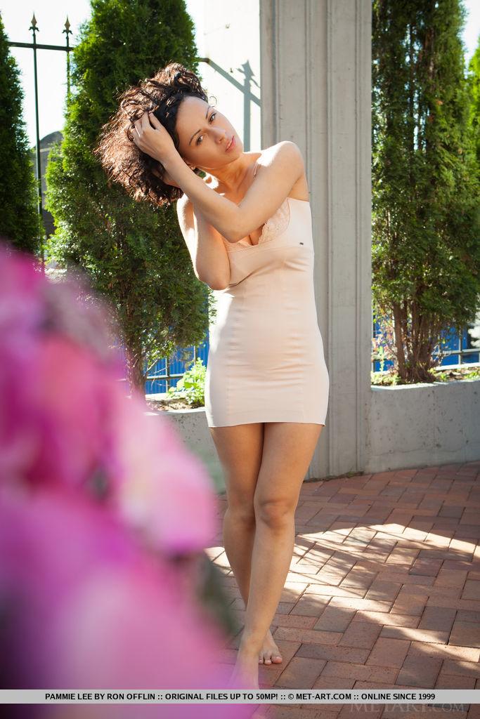 nude photo gallery of  Pammie Lee