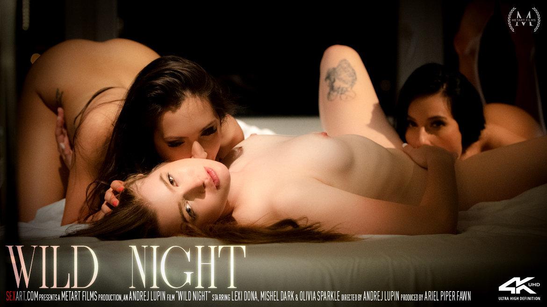 Full HD Video Porn Wild Night - Lexi Dona & Mishel Dark & Olivia Sparkle SexArt in birthday suit romantic