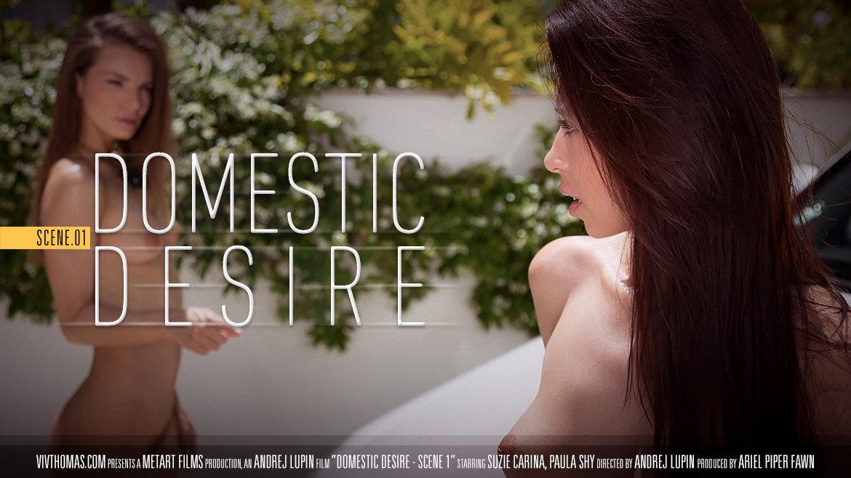 UHD Video Porn Domestic Desire Scene 1 - Paula Shy & Suzie Carina VivThomas miraculous alluring exposed