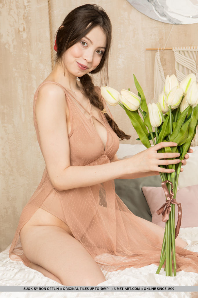 Suok beautiful smile of a brunette who is dressed in sexy lingerie that is semi transparent