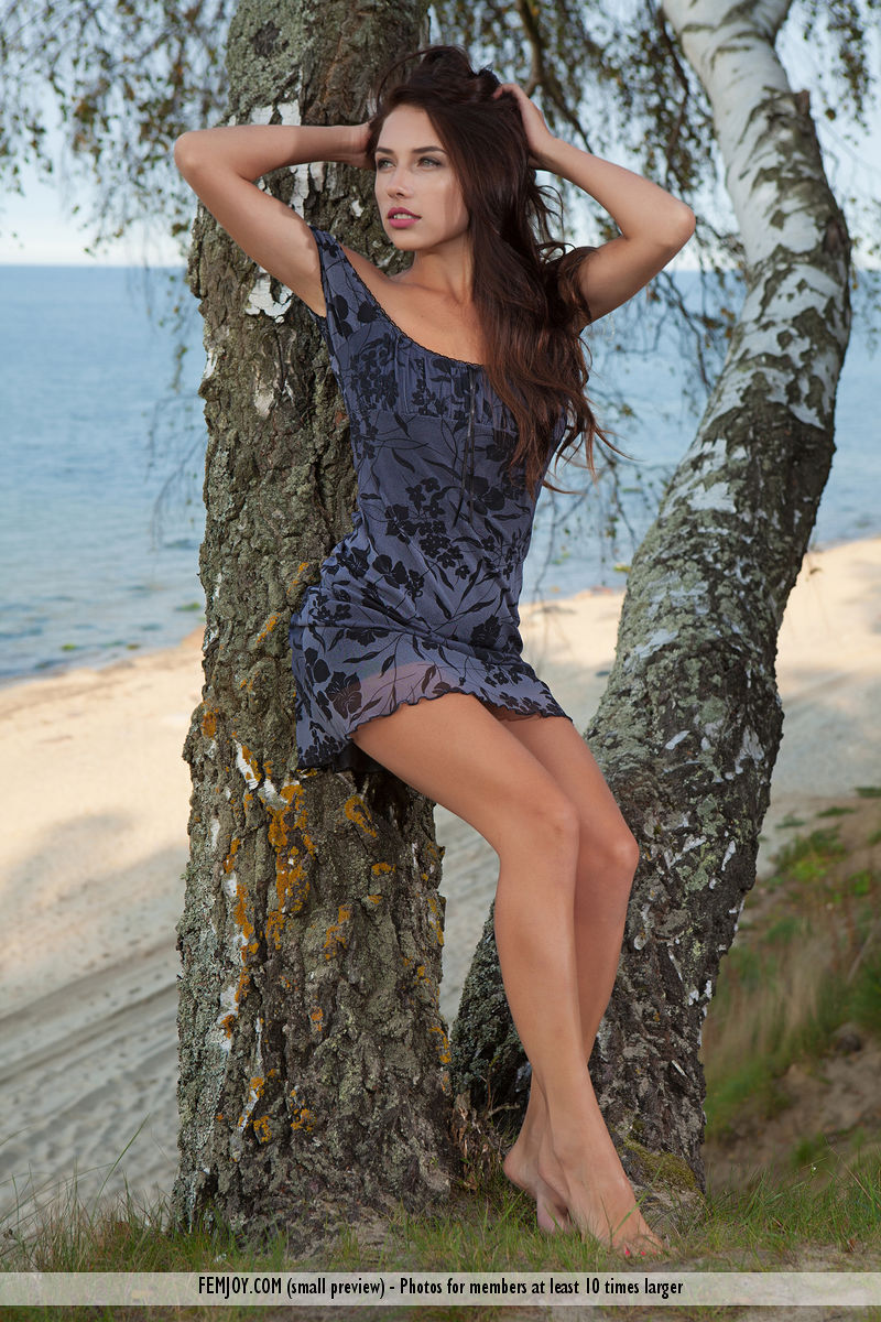 The captivating Niemira dressed in a beautiful dress is leaning against a birch tree on the coast